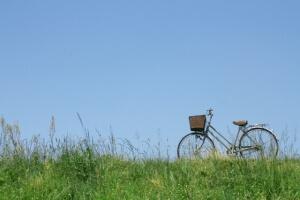 茶色のカゴ付自転車と緑の草