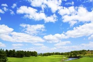 青空と緑の木と草原