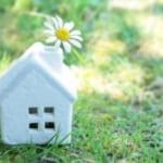 草の中に建つ白い家とたんぽぽ