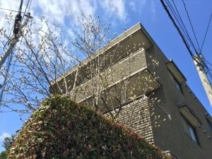 茶色の4階建て賃貸マンション