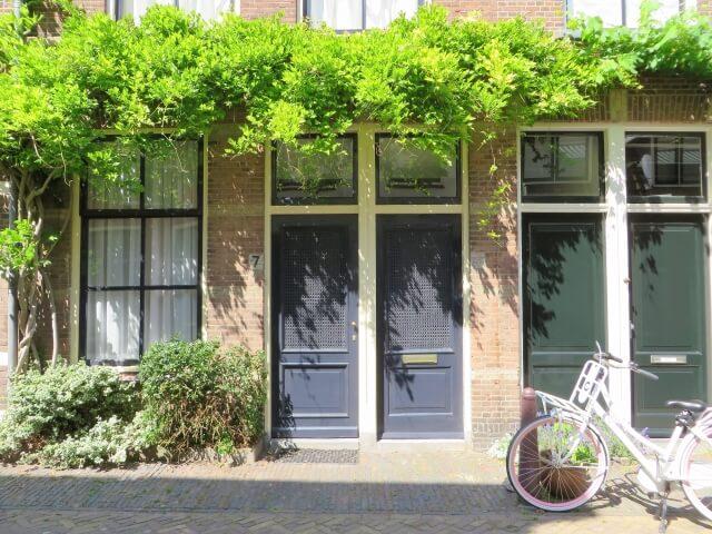 建物と蔦と自転車