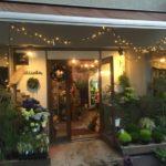高円寺の花屋電飾と外に並んだ緑植物